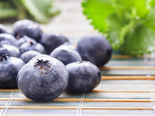 blueberry farm berries